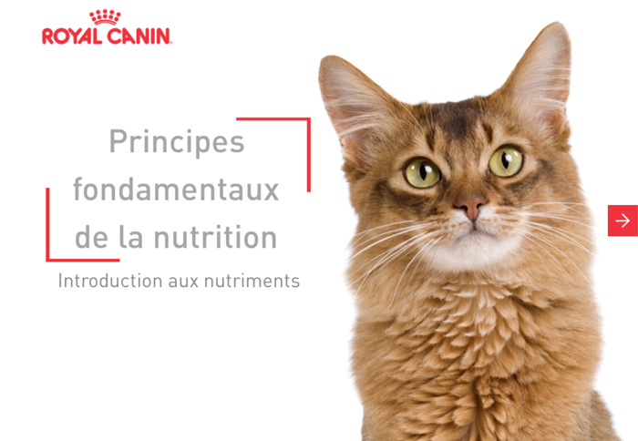 Principles fondamentaux de la nutrition