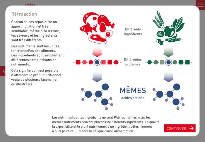 eLearning Content Translation