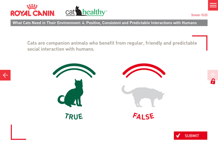 Bespoke True False eLearning Question