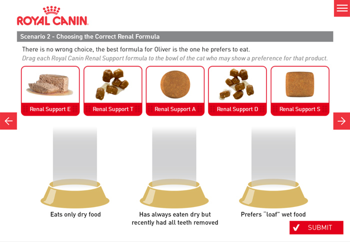 Interactive Drag and Drop